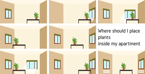 Eight pictures about How to place houseplants around home. Close the window, in a draft, direct sunlight, next to the battery, it is poorly lit. Vector illustration