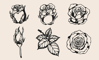 Set of rose vector by hand drawing.Beautiful flower on brown background.Rose vector art highly detailed in line art style.Flower tattoo for paint or pattern.