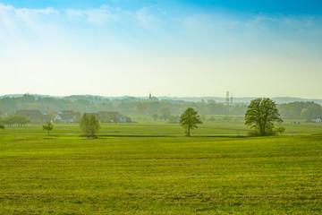 Wall Murals Ass Dorf hinter grüner Wiese und vor blauen Himmel (Ezelsdorf, Mittelfranken)