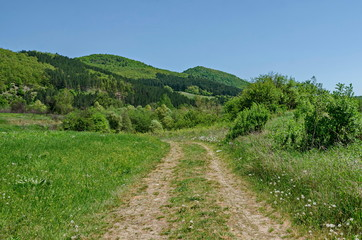 Springtime green forest, glade and valley toward Plana mountain with path near to Pasarel village, Bulgaria
