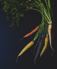 Carrots with Greens