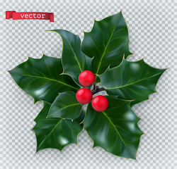 Holly traditional Christmas decoration. 3d realistic vector icon