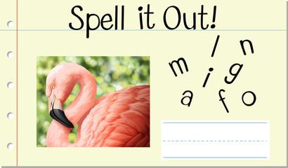 Spell English word flamingo