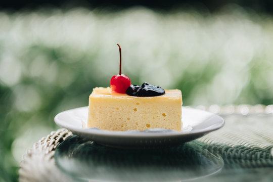 Homemade New York cheesecake on a white plate in the garden. Blur garden background