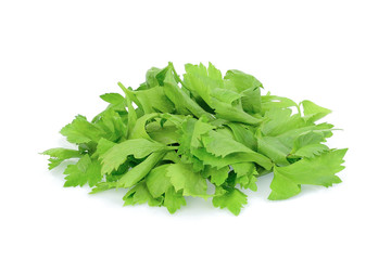 pile of coriander leaves isolated on white background