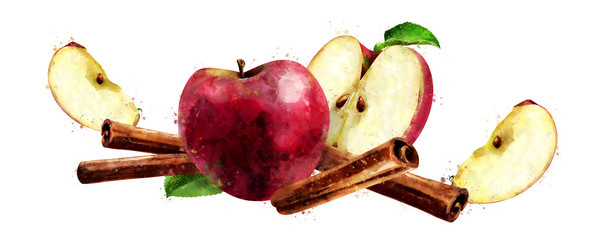 Watercolor cinnamon and red apples on white background