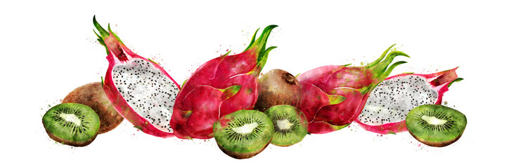 Dragon fruit and kiwi on white background. Watercolor illustration
