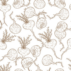 Maca. Background, wallpaper, seamless. Sketch On a white background.
