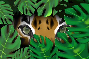 Tiger in the forest, natural concept