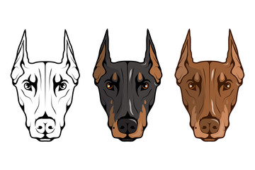 doberman pinscher, american doberman, pet logo, dog doberman, colored pets for design, colour illustration suitable as logo or team mascot, dog illustration, vector graphics to design