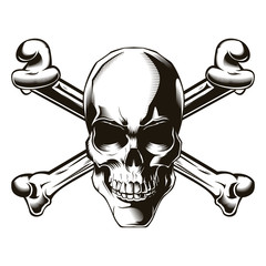 Human skull with cross bones. Vector illustration. Print vector design. Premium quality skull concept. Jolly roger
