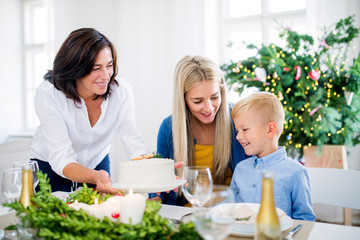 A small boy with mother looking at grandmother putting a cake on table at Christmas time.