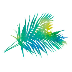 vector, on a white background watercolor silhouette palm leaf