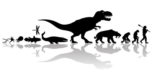Evolution of life on Earth. Silhouette with transparent reflection isolated on white background.