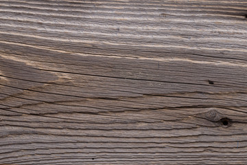 Vintage gray wood texture. Abstract background.
