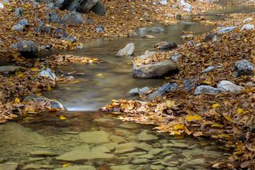 A little water spring in the Carpathian Mountains in fall season