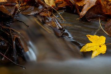 A little cascade in the Carpathian Mountains in fall season