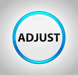 Adjust Round Blue Push Button