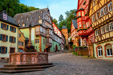 Wall Mural - Miltenberg medieval Old Town, Bavaria, Germany