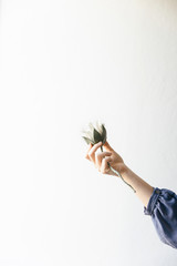 A womans hand is holding out a diy made white felt exotic protea flower.