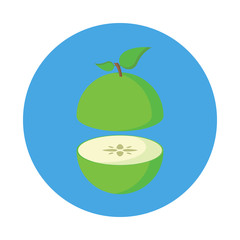Sliced Apple flat icon isolated on blue background. Simple fruit in flat style, vector illustration.