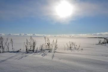 Снежные поля