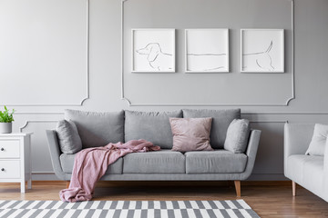 Dog's posters above comfortable grey couch in stylish living room interior with two sofas Wall mural
