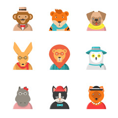 Animal funny faces. Hipster avatars of monkey cat kangaroo hippo tiger cute clothes zoo vector characters in flat style. Illustration of hipster animal, owl and hippopotamus