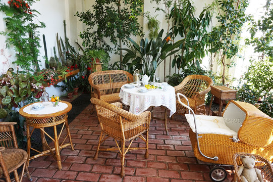 small winter garden with tropical plants