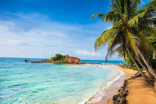 Wonderful sand beach of Mirissa,  Sri Lanka.