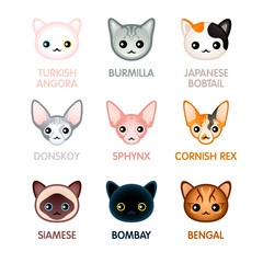 Cute cat icons, set I (new version)