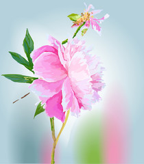 Peonies. Scenic image of flowers in vector.