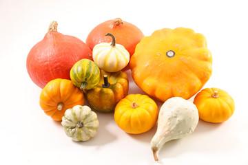 assorted various pumpkin