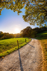 Autumn landscape at sunset with a path beside a meadow
