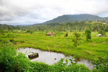 indonésie bali Sidemen rizieres