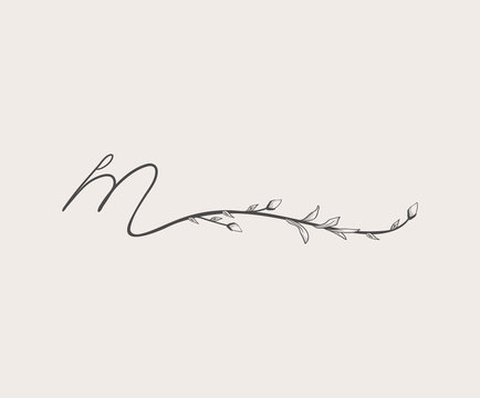 Vector Hand Drawn floral m monogram and logo