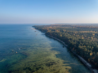 Aerial autumn forest near Sea