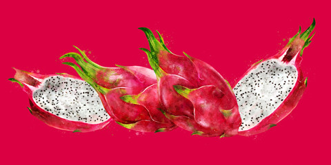 Dragon Fruit on red background. Watercolor illustration