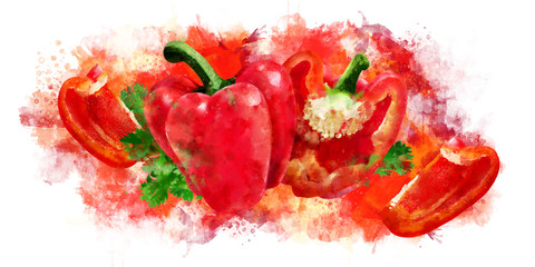 Red Pepper on white background. Watercolor illustration