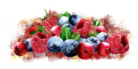 Raspberries, cranberries and blueberries on white background. Watercolor illustration