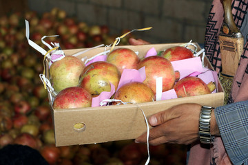 A worker holds a box of pomegranates prepared for export in Saada