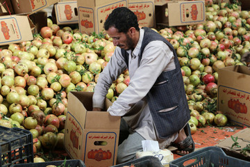 A worker packs pomegranates for export in Saada