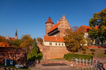 zamek - Olsztyn