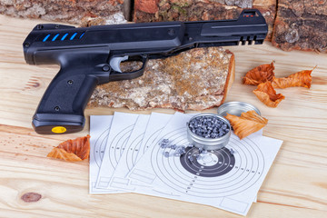 A airgun with its pellets and targets to practice the shot
