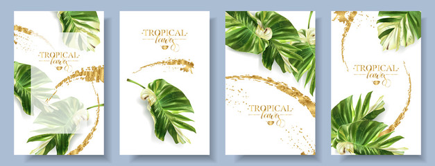 Vector tropical alocasia leaf banner set on white background. Exotic botany for cosmetics, spa, perfume, health care products, aroma, tourist agency. Best as wedding invitation. With place for text