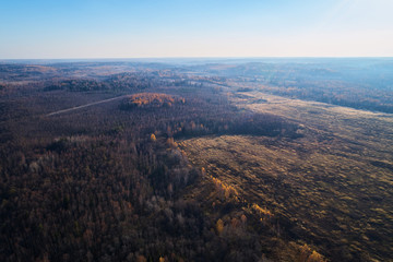 Autumn forest with a road. High-altitude shooting from a drone.