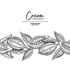 Cocoa border. Vector superfood drawing template.  Fruit, leaf an