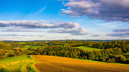 Autumn landscape in Germany with fields and forest at sunset