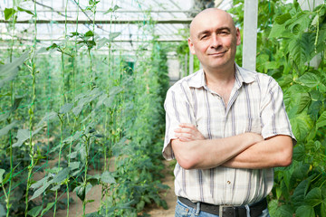 Male horticulturist standing near   pea and soy seedlings