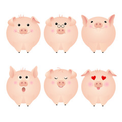 Funny pig stickers
